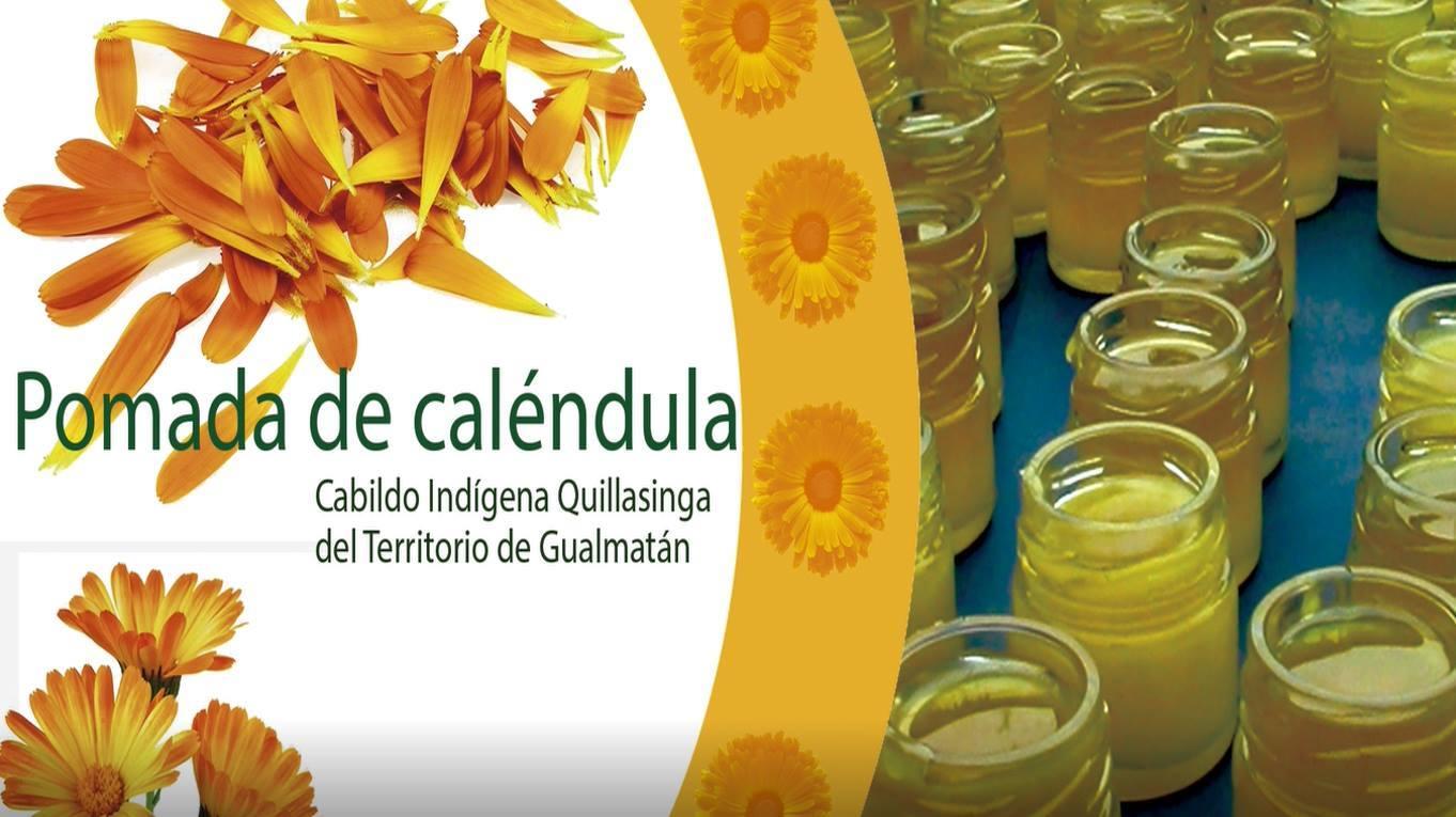 Transformación de plantas medicinales, Mujeres Quillacingas, Cabildo Guamatán