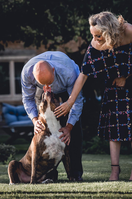 Dog Wedding Guest Grantham