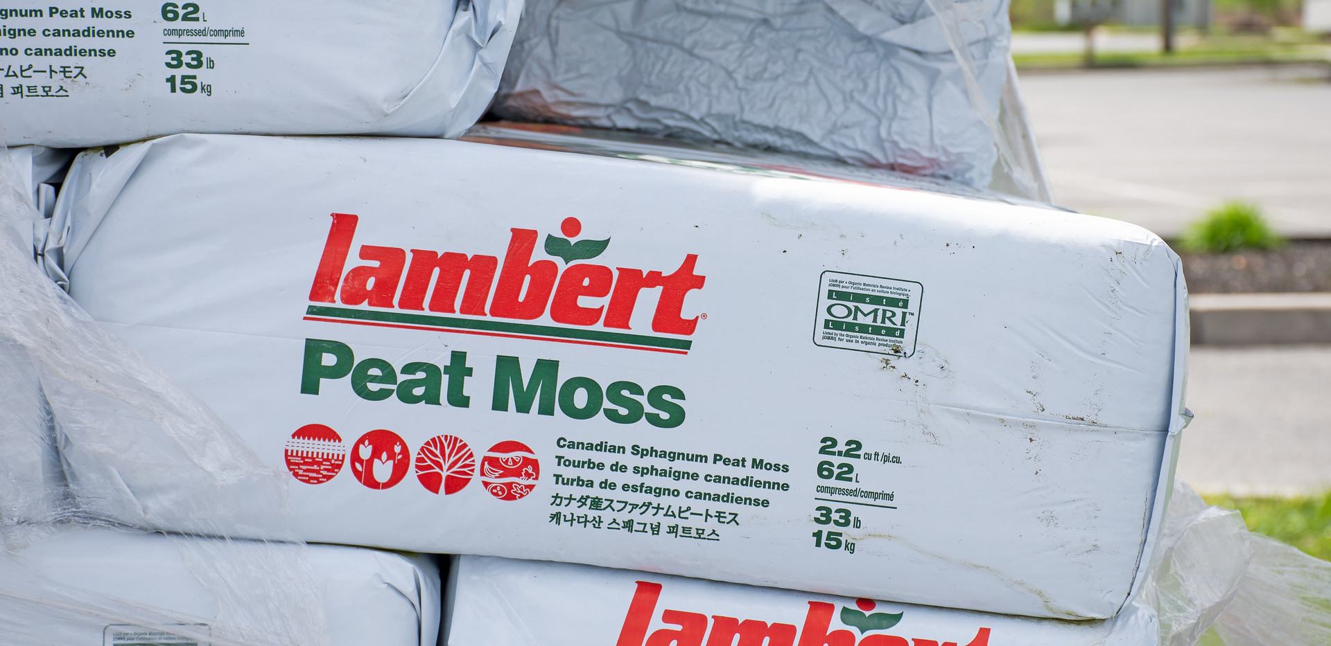Peat Moss.jpg