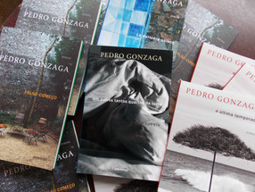 Poesia - Livros de Pedro Gonzaga