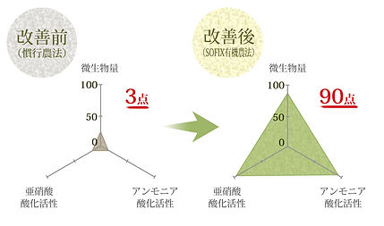 sofix-index-2-2-l.jpg