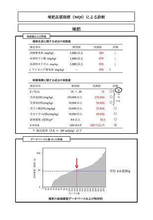 sofix-index-7-l.jpg