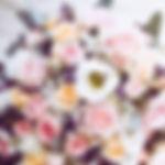 bloom-blooming-blossom-1424810.jpg