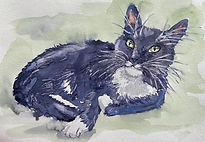 Watercolor by Colette Pitcher of cat named Figaro