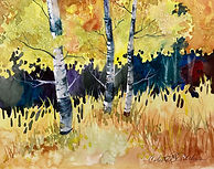 watercolor of aspens by Colette Pitcher