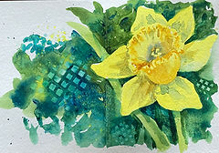 Watercolor card of a daffodil by Colette Pitcher
