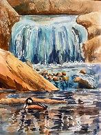 Waterfall_Hooded Merganser