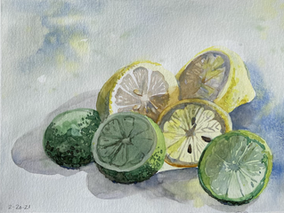 Lemons and limes still life up on video classes page.  Photo will be added Monday afternoon.