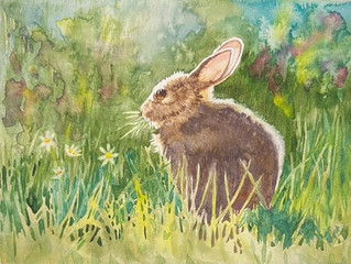 Bunny for Spring