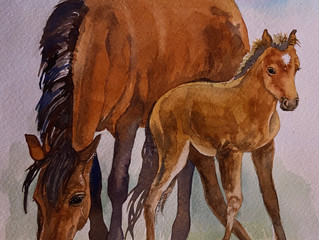 Foal and Foil