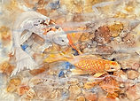 Koi watercolor by Colette Pitcher