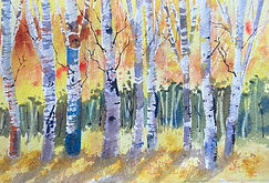 Aspen watercolor by Colette Pitcher