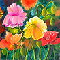 Poppies acrylic by Colette Pitcher