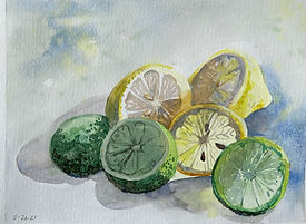 Watercolor painting of lemons and limes by Colette Pitcher