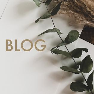 Eucalyptus link to providence studio art blog