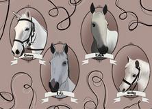 Horses Commission