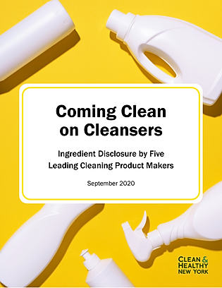 CleaningProducts 2020.png
