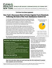 thumbnail factsheet to download PDF