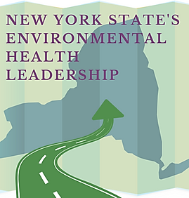 NYS Roadmap cover cropped.png