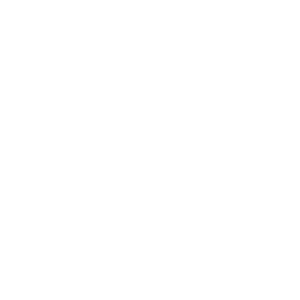 amc theatres logo 2 white.png