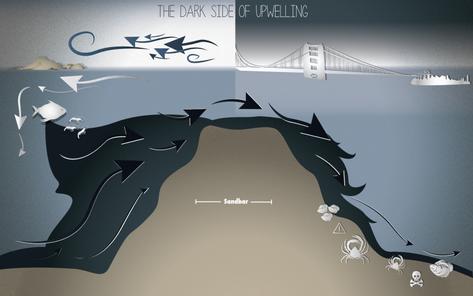 The Dark Side of Upwelling - Bay Nature Magazine