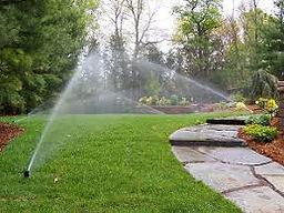 irrigation.jpeg
