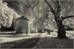 Grounds of Bussy Rabutin Chateau