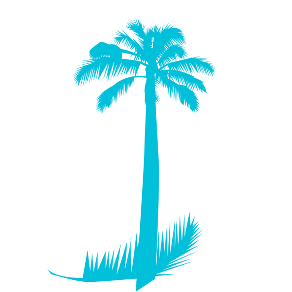 palmeraverde.png