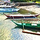 van & ferry charter, Leah Beach, Berberabe Beach