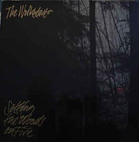 The Walkabouts - Setting the Woods on Fi
