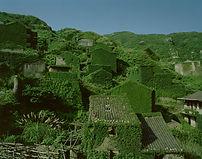 _Lingering Garden_No.2|122°82′E     30°7