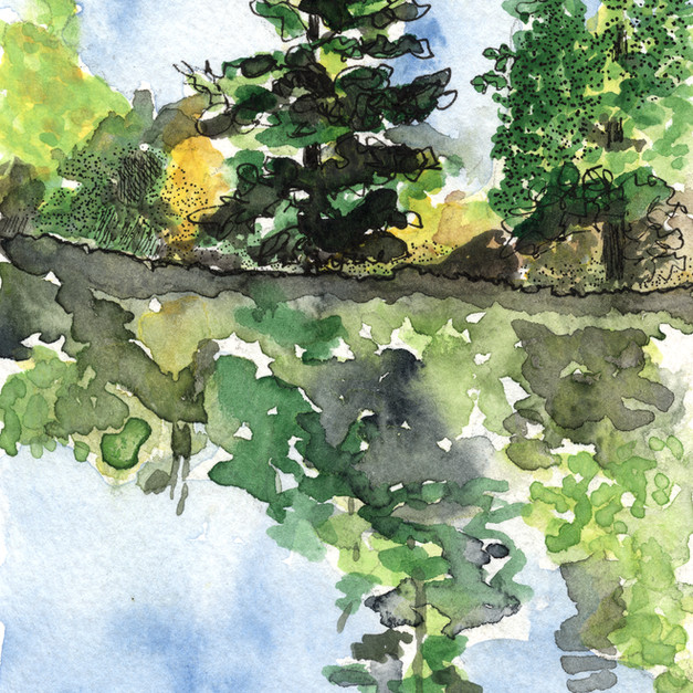 Favourite tree 1 Newboro Channel.jpg