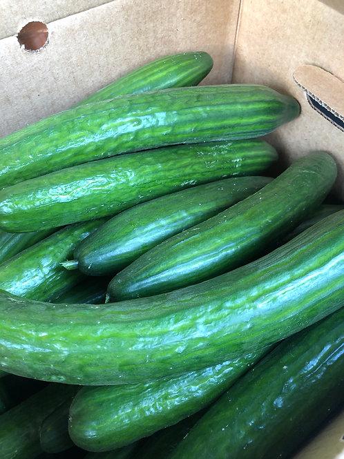 Cucumber English/EA