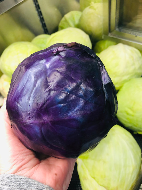 Cabbage Red/Lb