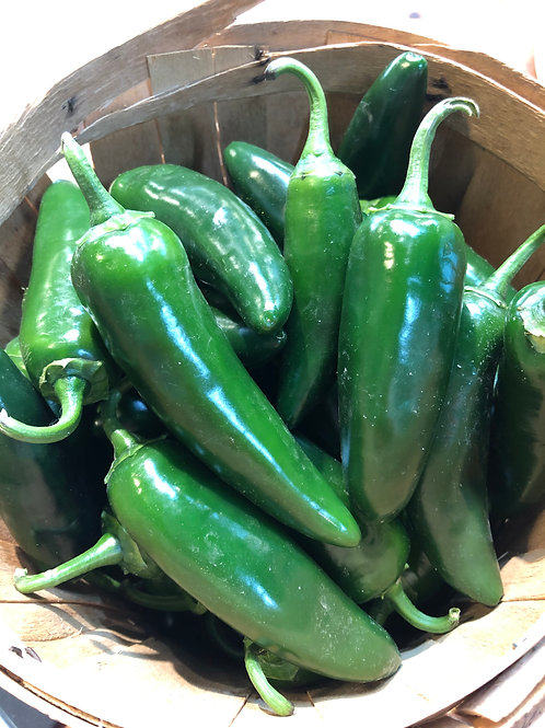 Peppers Jalapeno/.5LB