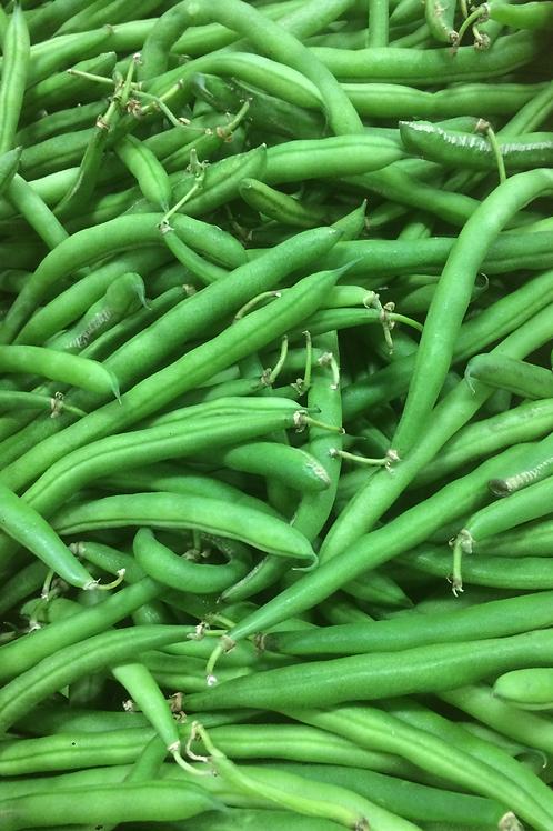 Beans Green/LB