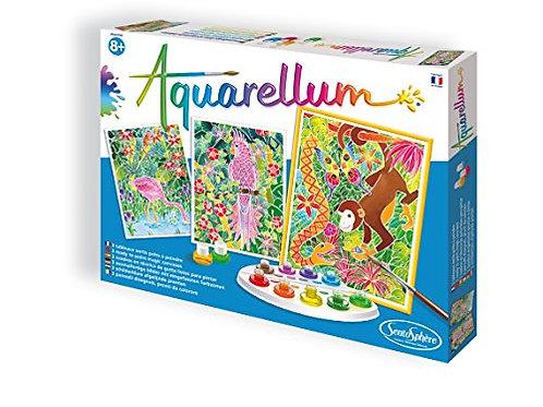 Aquarellum granda - Foresta amazzonica