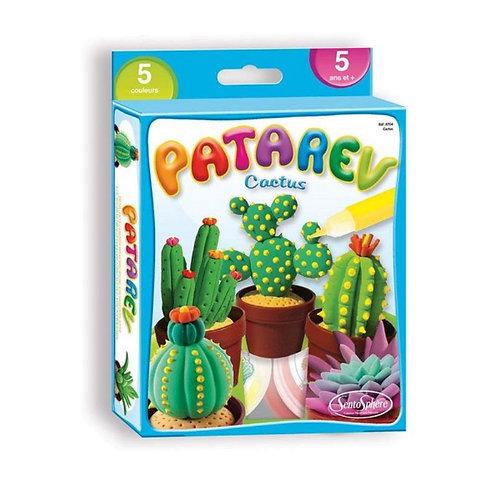 Patarev - cactus