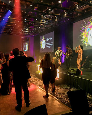 sydney bands, sydney entertainment, prana entertaiment