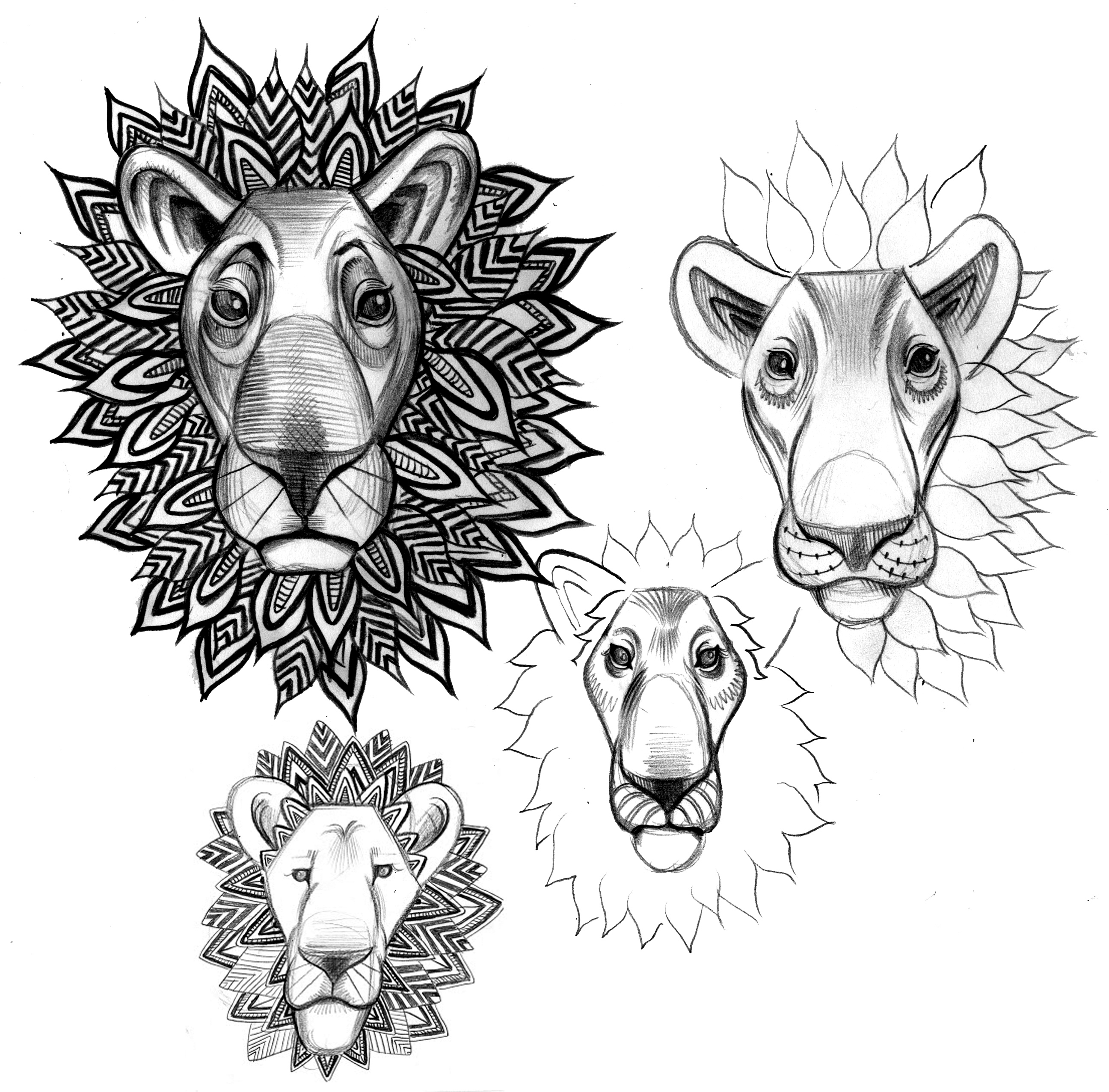 lion heads graphite