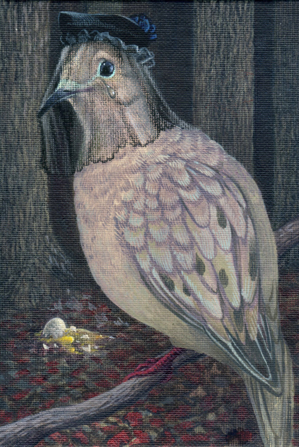The Mourning Dove