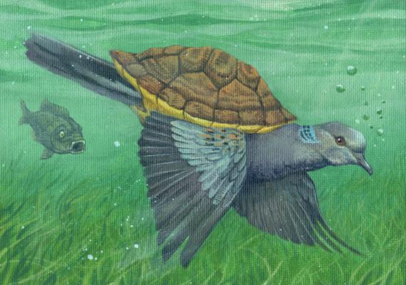 The Turtle Dove