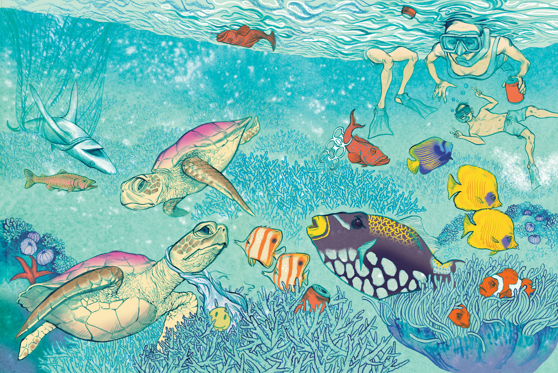 Spot What's Wrong with The Great Barrier Reef?