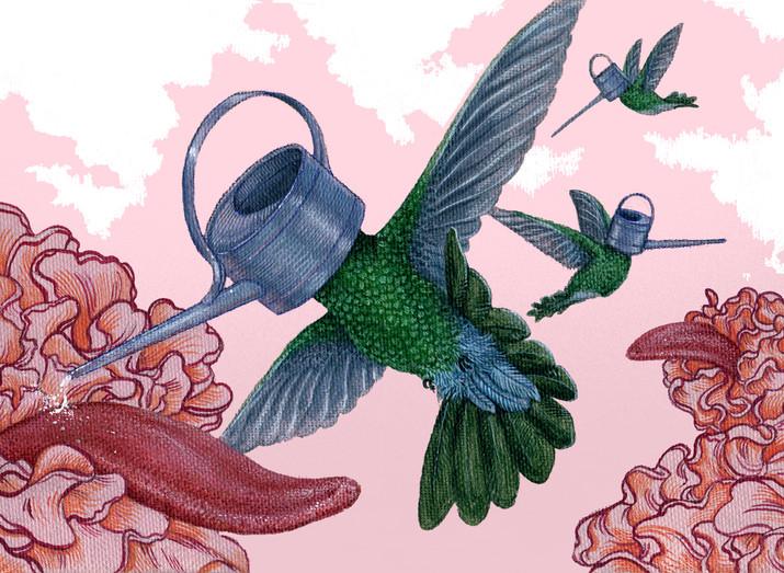 Watering Birds