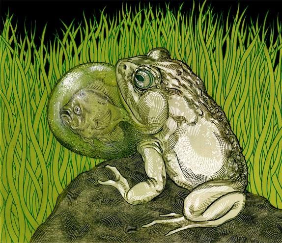 frog-fish-throat.jpg