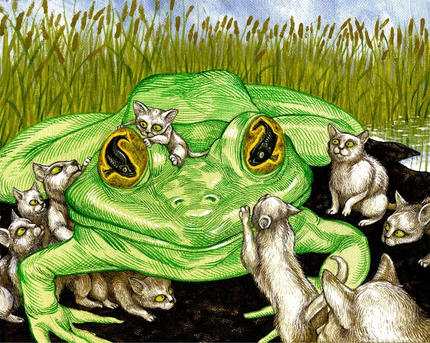 cats-and-frogs.jpg