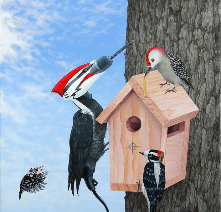 Constructing Birds