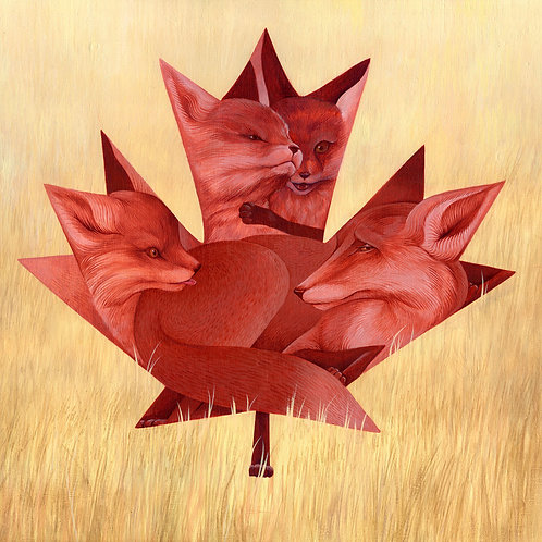 Red Maple / Red Foxes