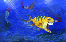 razor fish.jpg
