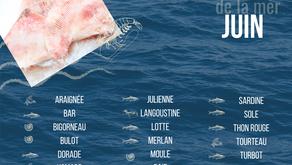 Calendrier des produits de la mer de juin